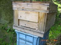 H240507新しい巣箱