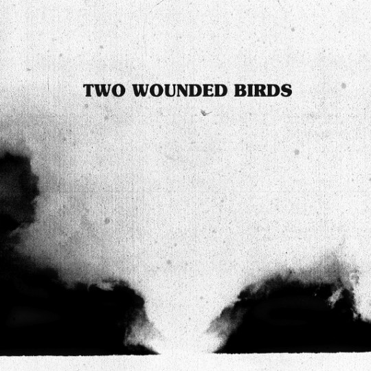 two_wounded_birds