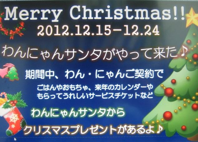 クリスマス ポップ