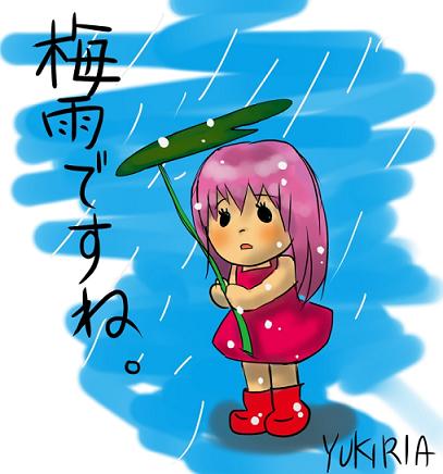 梅雨ですね