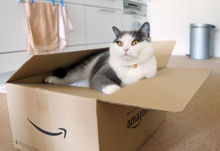 どっちみちの箱