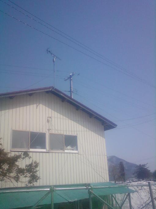 クーちゃん写真2013030901