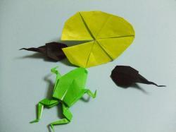 蛙・おたま