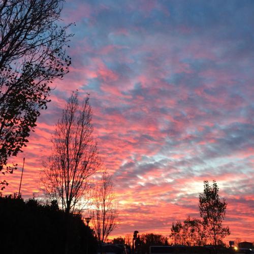 tramont2