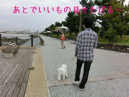 CIMG6366_R.jpg