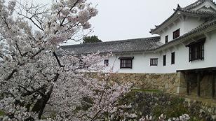 himeji201336.jpg