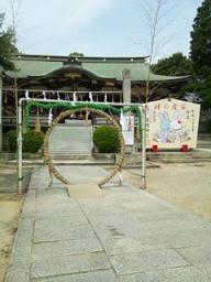 hioka20111.jpg