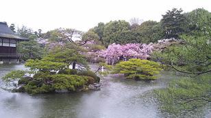 kyoto201344.jpg