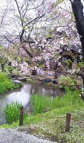 kyoto201349.jpg