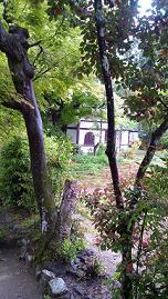 kyoto201351.jpg