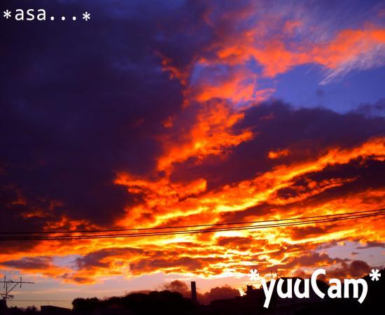 vivi2012091629_convert_20120918083707.jpg