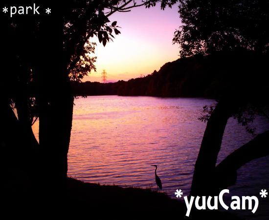 vivi2012100772_convert_20121007202115.jpg
