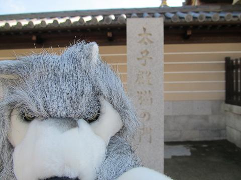 太子殿猫の門