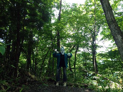 森のボーカリスト