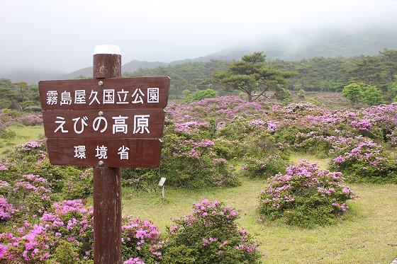 甑岳登山中止2