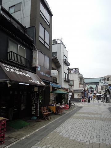 Chikusada 1
