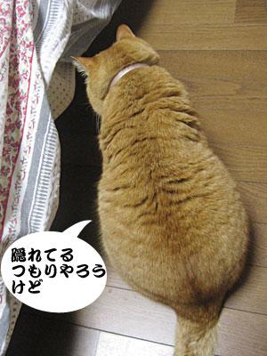 14_02_07_1.jpg