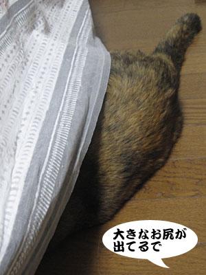 14_02_07_2.jpg