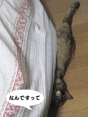 14_02_07_3.jpg