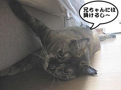 14_02_07_4.jpg