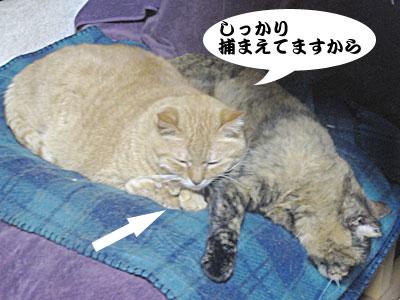 14_02_12_2.jpg