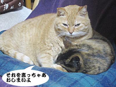 14_02_12_3.jpg