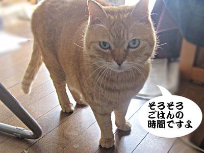 14_02_16_1.jpg