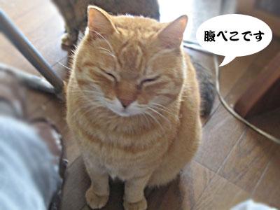 14_02_16_5.jpg