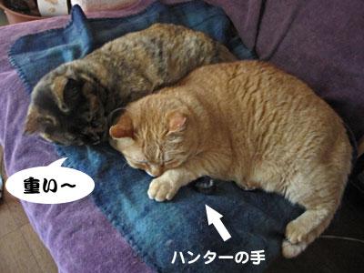 14_02_23_1.jpg