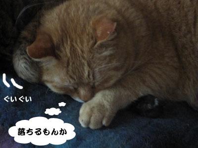 14_02_23_3.jpg