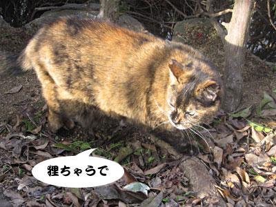 14_02_23_4.jpg