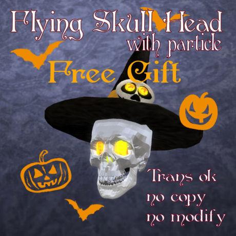 Flying Skull head panel