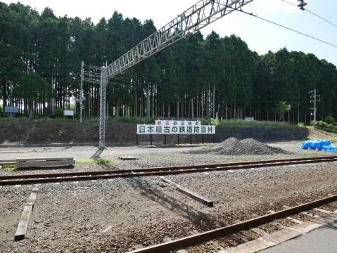 20140814tohoku-111.jpg