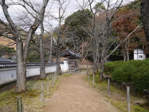 20141206kishin_018.jpg