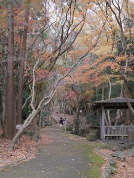 20141206kishin_030.jpg