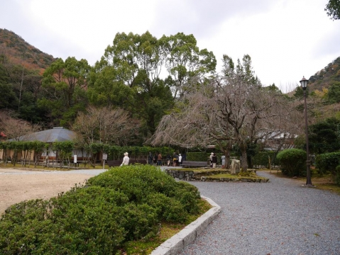 20141206kishin_042.jpg