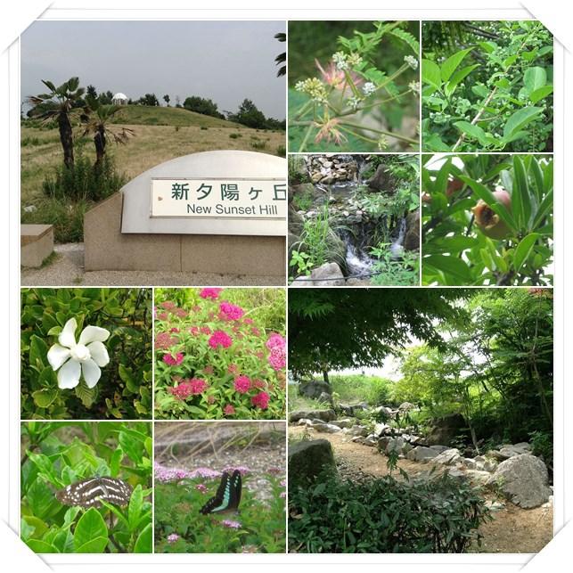 yurien5.jpg