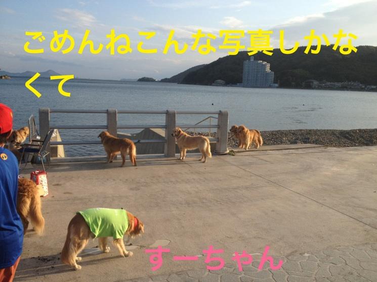 20121010211429e28.jpg