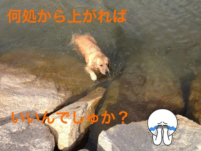 20121013191427fa1.jpg