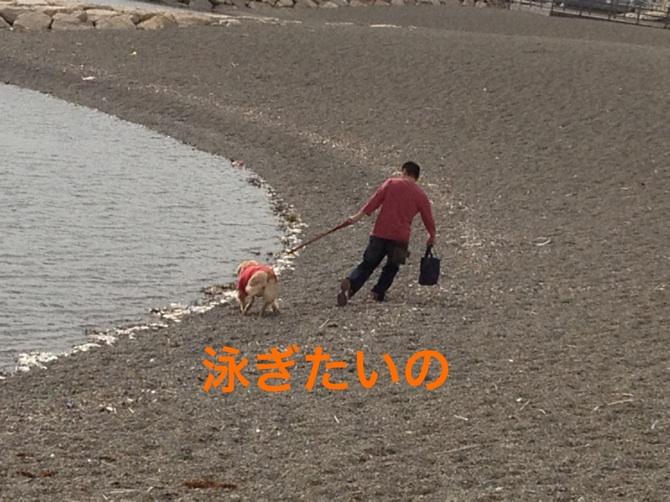 201210131932382f7.jpg