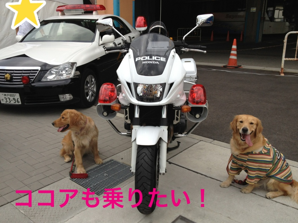 201210162007032cc.jpg