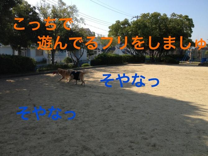20121023163507401.jpg