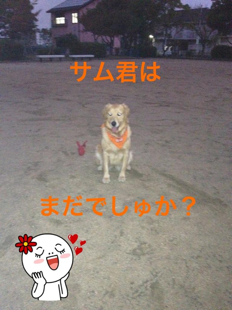 20121029205543231.jpg