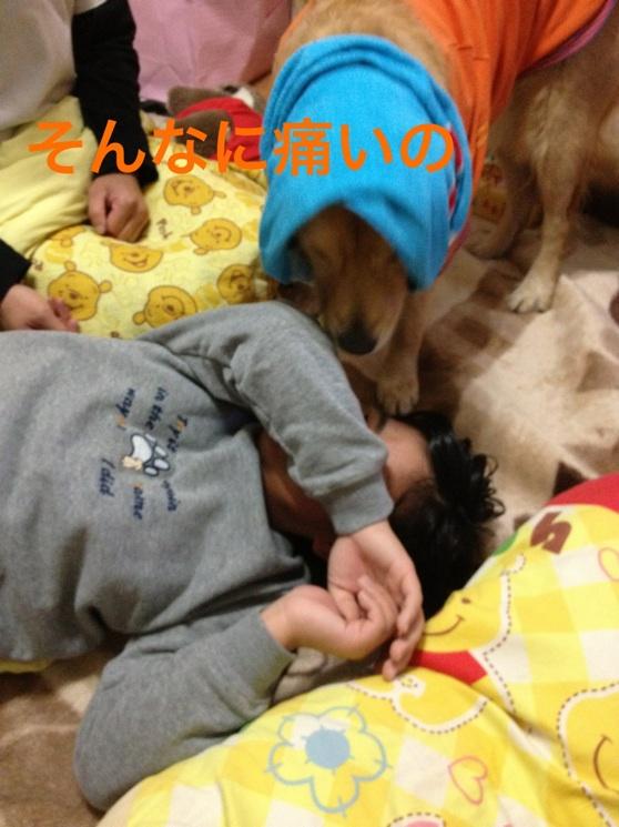 20121103215939aac.jpg