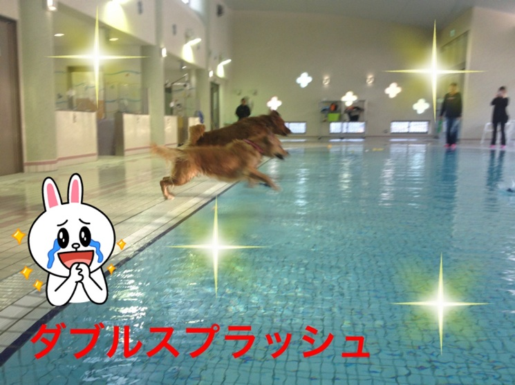 20121111214243327.jpg