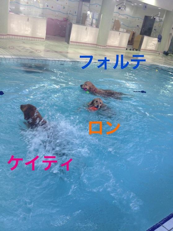 2012111121424582c.jpg