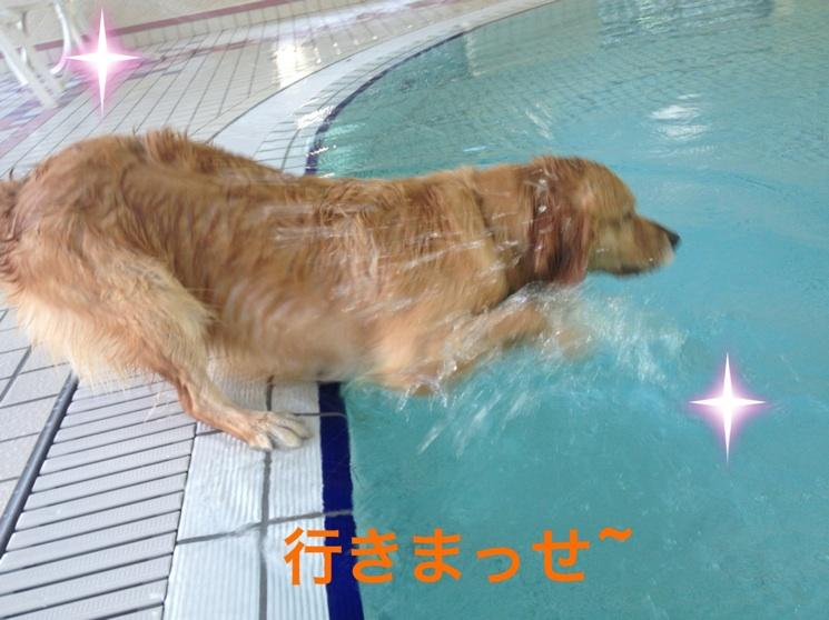 20121111214310da5.jpg
