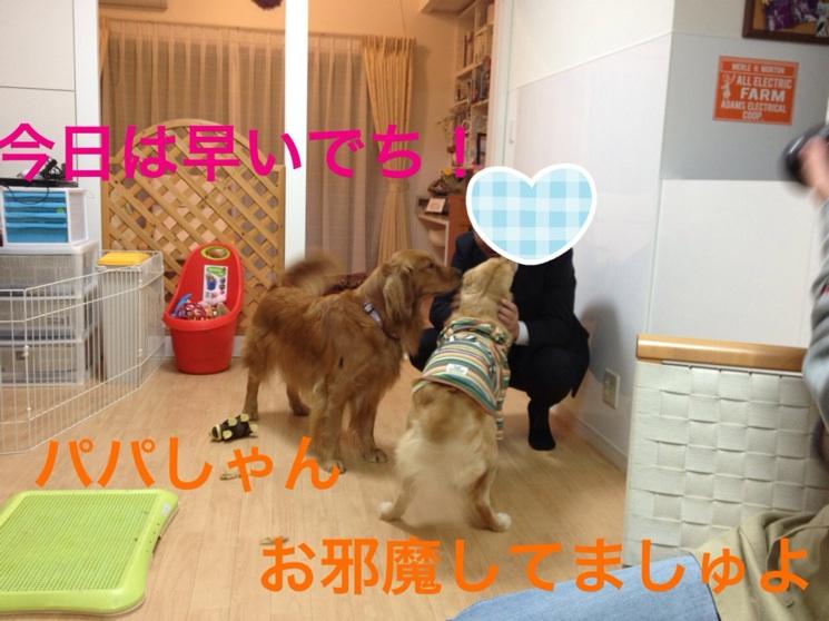 20121119230626d7b.jpg