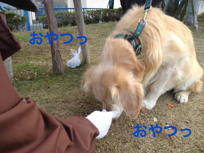 201211212313060ef.jpg