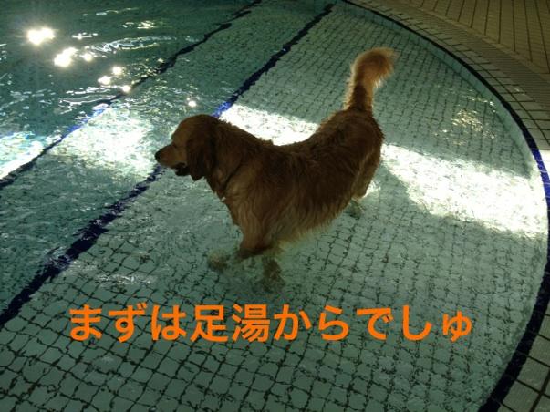 201211252204169a8.jpg